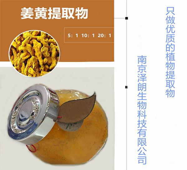 天津姜黄提取物
